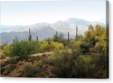 Canvas Print featuring the photograph Arizona Back Country by Gordon Beck