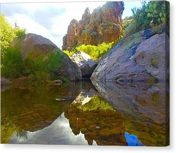 Arizona Oasis Canvas Print by Hunter Martin