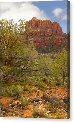 Mike Canvas Print - Arizona Outback 3 by Mike McGlothlen
