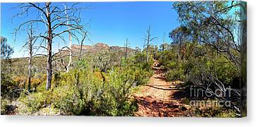 Canvas Print featuring the photograph Arkaroo Rock Hiking Trail.wilpena Pound by Bill Robinson