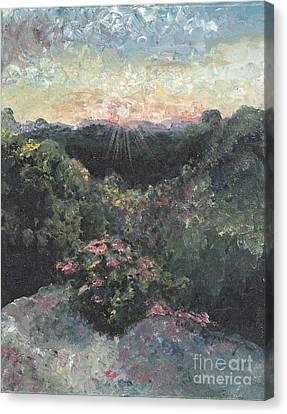 Arkansas Mountain Sunset Canvas Print by Nadine Rippelmeyer