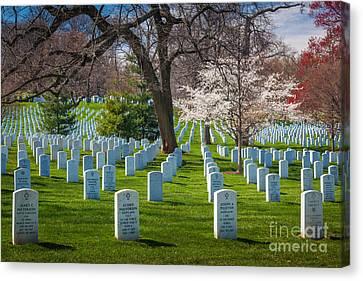 Arlington National Cemetery Canvas Print by Inge Johnsson