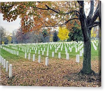 Arlington National Cemetery Virginia Canvas Print by Brendan Reals