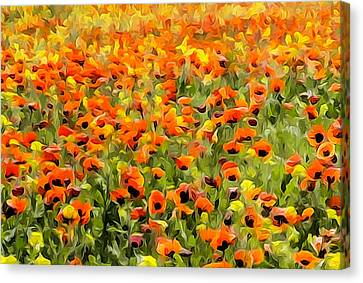 Armenia Flowers In Spring Canvas Print by Dennis Cox
