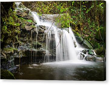 Armes Waterfall IIi Canvas Print by Marco Oliveira