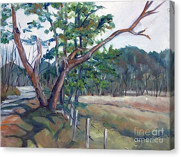 Around Cades Cove Canvas Print by Janet Felts