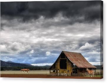 Barn Storm Canvas Print - Around The Barn by Dennis Adams