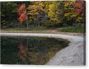 Concord Ma Canvas Print - Around The Bend- Hiking Walden Pond In Autumn by Toby McGuire