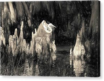 Arrival  Canvas Print by Scott Mullin