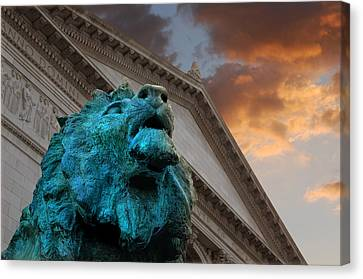 Art And Lions Canvas Print by Anthony Citro