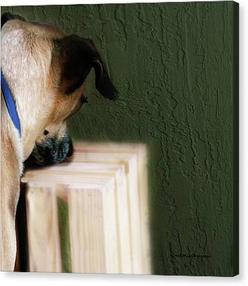 Buy Dog Art Canvas Print - Art By Cooper 2 by Miss Pet Sitter