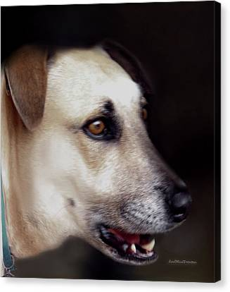 Buy Dog Art Canvas Print - Art By Cooper 9 by Miss Pet Sitter