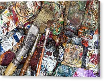 Art Is Messy 5 Canvas Print by Carol Leigh