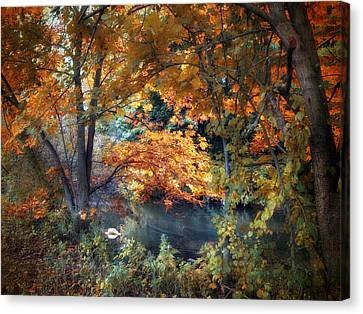 Swans... Canvas Print - Art Of Autumn by Jessica Jenney