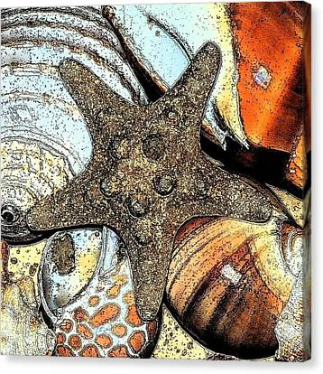 Art Shell 1 Canvas Print by Stephanie Troxell