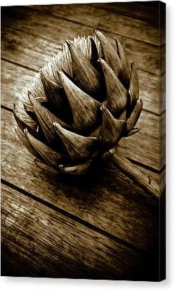 Canvas Print featuring the photograph Artichoke Flower Still Life by Frank Tschakert