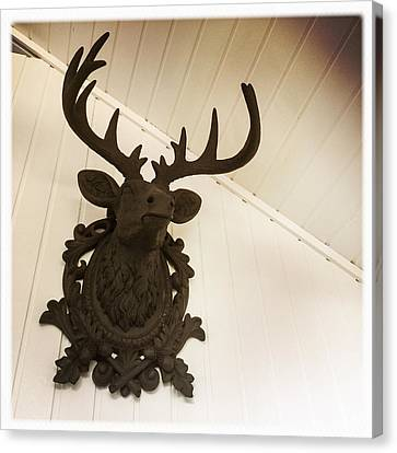 Artificial Deer Antlers Canvas Print by Matthias Hauser