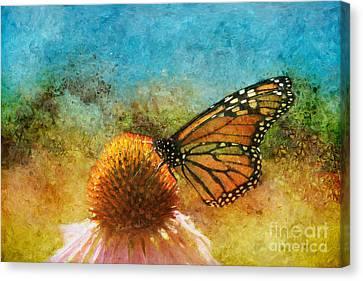 Artistic Monarch Canvas Print by Sari Sauls