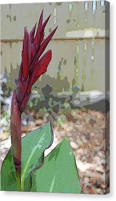 Artistic Red Canna Lily Canvas Print