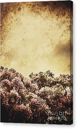 Cardboard Canvas Print - Artistic Vintage Flowers Background by Jorgo Photography - Wall Art Gallery