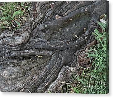 Artistically Rooted Canvas Print