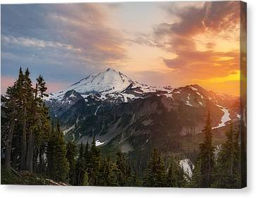 Artist's Inspiration Canvas Print by Ryan Manuel