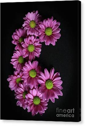 Artsy In Pink And Green Canvas Print