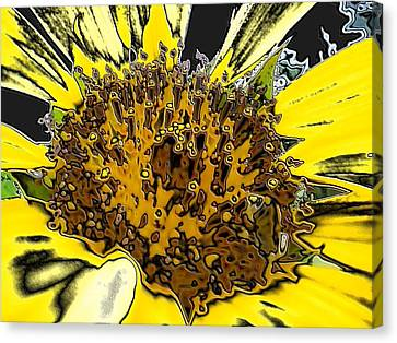 Artsy Sunflower Canvas Print by Sonya Chalmers