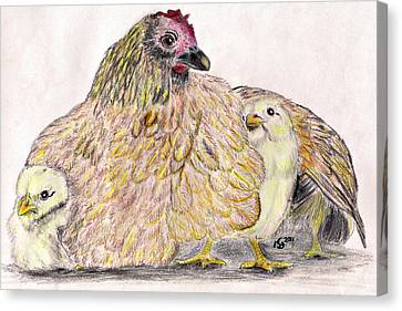 As A Hen Gathereth Her Chickens Under Her Wings Canvas Print