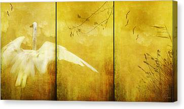 As Birds Fly Up..... Canvas Print