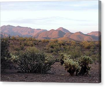 Canvas Print featuring the photograph As Evening Falls by Gordon Beck