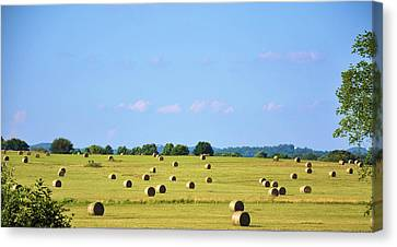As Far As You Can See Canvas Print by Jan Amiss Photography