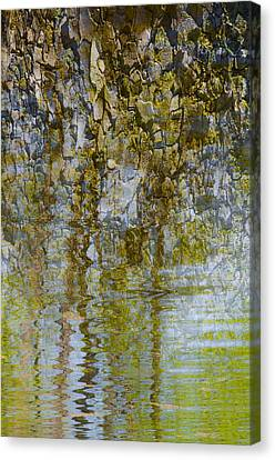 As If A Canopy Canvas Print by Sean Holmquist