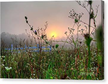 As Morning Comes Canvas Print by Robert Pearson