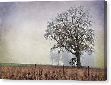 As The Fog Sets In Canvas Print by Jan Amiss Photography