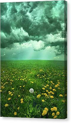 As The Roads Fade Away Canvas Print by Phil Koch