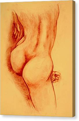 Nude Drawings Canvas Print - Asana Nude by Dan Earle