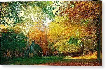 Ashridge Autumn Canvas Print by Anne Kotan