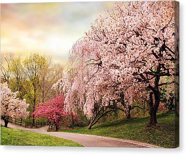 Asian Cherry Grove Canvas Print by Jessica Jenney