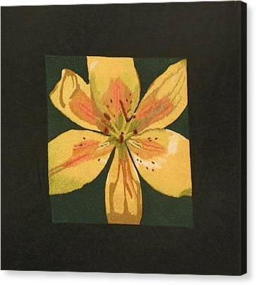 Asiatic Lily Canvas Print by Jenny Williams