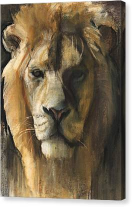Lion Canvas Print - Asiatic Lion by Mark Adlington