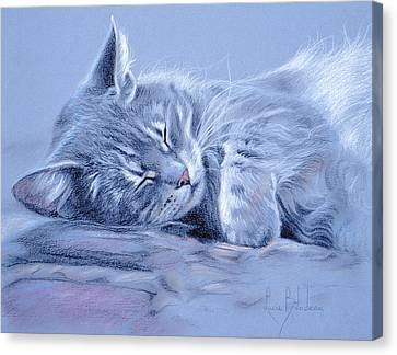 Asleep Canvas Print by Lucie Bilodeau