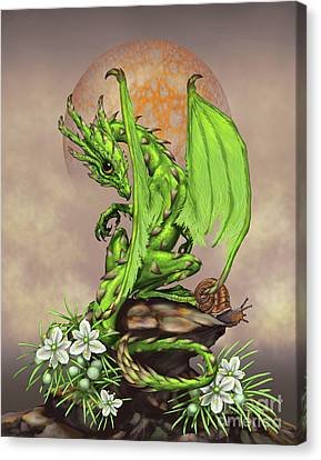 Asparagus Dragon Canvas Print by Stanley Morrison