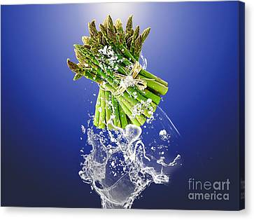 Asparagus Splash Canvas Print by Marvin Blaine