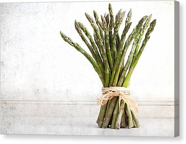 Asparagus Vintage Canvas Print by Jane Rix