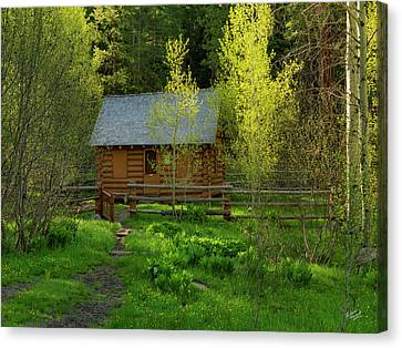 Old Cabins Canvas Print - Aspen Cabin by Leland D Howard