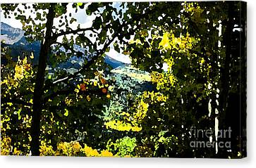 Aspen Effect Canvas Print