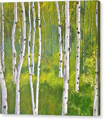 Aspen Forest Canvas Print by Heather Matthews