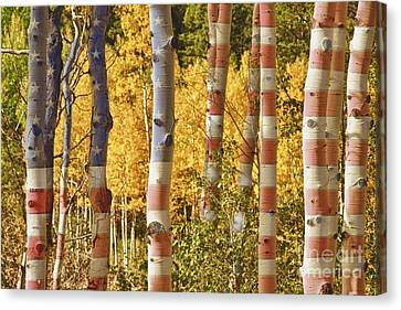 Aspen Gold Red White And Blue Canvas Print by James BO  Insogna