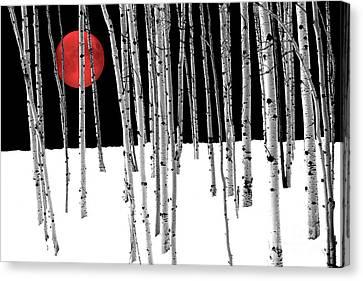 Canvas Print featuring the photograph Aspen Grove Winter by Juli Scalzi